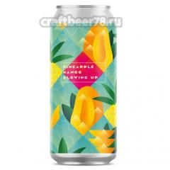 Stamm Brewing - Blowing Up: Pineapple & Mango
