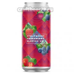 Stamm Brewing - Blowing Up: Strawberry Chokeberry