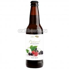 Plan B - Melomel Black Currant / Raspberry